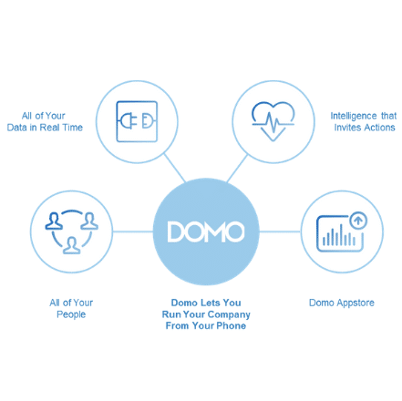 Domo Business Intelligence | Domo Professional Services