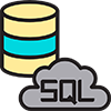 SQL Server Reporting Services